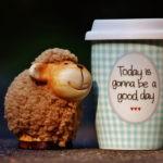 Позитивният фокус срещу позитивното мислене